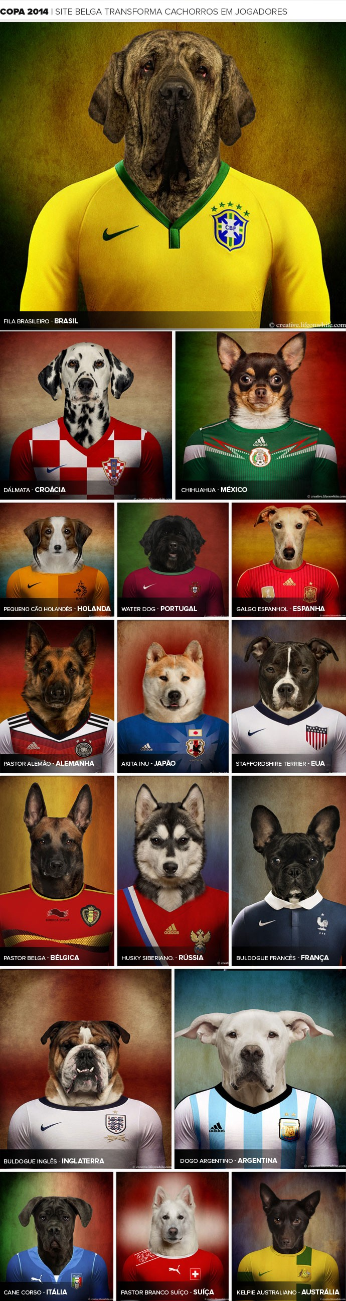 template_cachorros