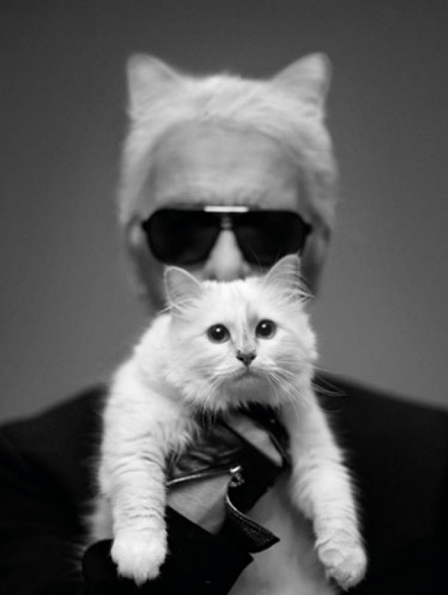 Choupette-Karl-Lagerfeld_reference-e1354619731755